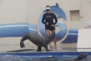 Walk like a sea lion