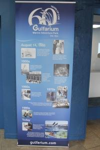Gulfarium history
